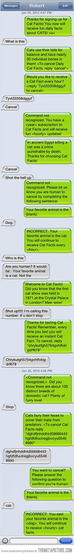 funny text message prank cats... I have a friend I could mess with for HOURS doi...